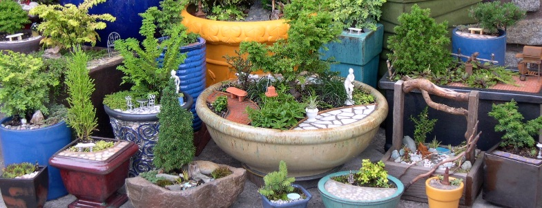 The miniature garden society home for the discerning miniature it is obvious how much thought and time you put into it and im sure it will be the go to site we need your miniature garden friend joyce workwithnaturefo