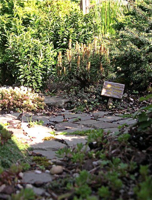 ING - pond garden pine sign