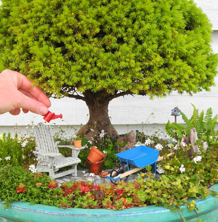 An Exclusive, Members Only Website For Celebrating The Joy Of Gardening In  Miniature!